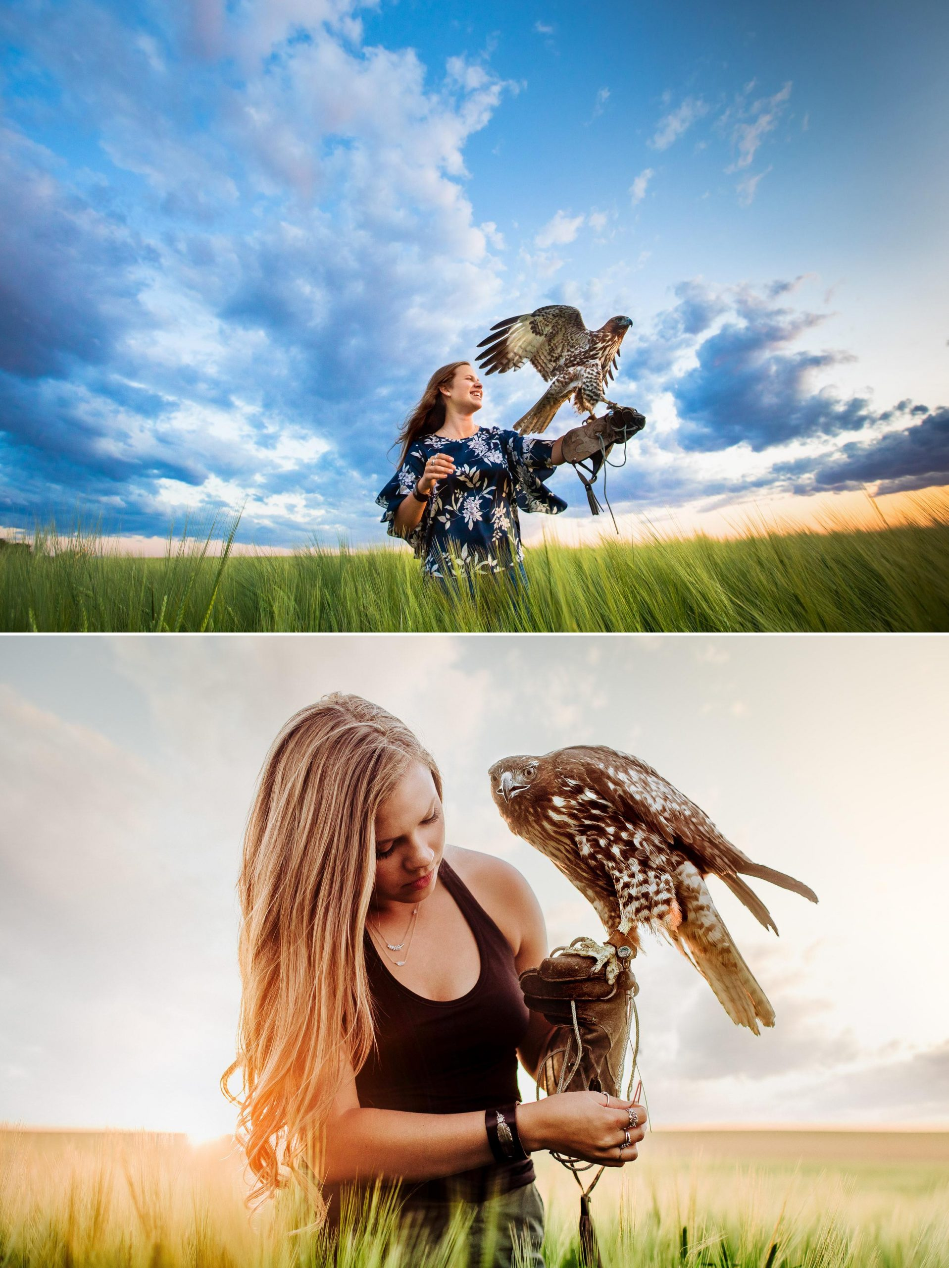 A picture of a senior in great falls Montana as a falconer